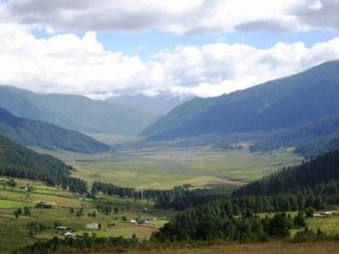 Cranes_in_Bhutan02.jpg