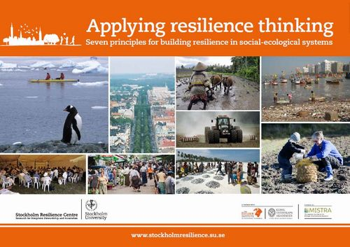 Seven Principles for Building Resilience