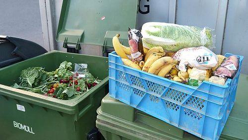 マサチューセッツ州、食品廃棄禁止法の経済効果は年間1億7,500万ドル