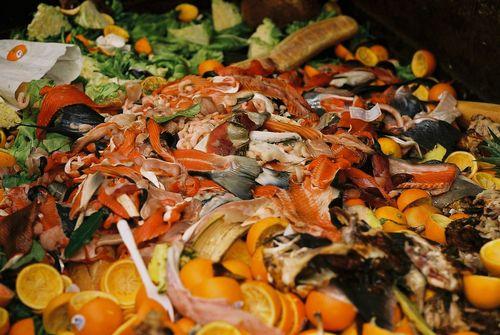 世界自然保護基金、アメリカン・ホテル&ロッジング協会、ロックフェラー財団が、ホテルの食品廃棄物防止に向けて、ホテルブランドを団結