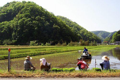 日本協同組合連携機構、発足:日本の協同組合の組合員数は6,500万人
