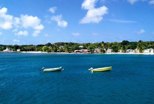 バルバドスのエネルギー・水資源大臣、島のカーボンフリー化の手助けを協同組合部門に要請する