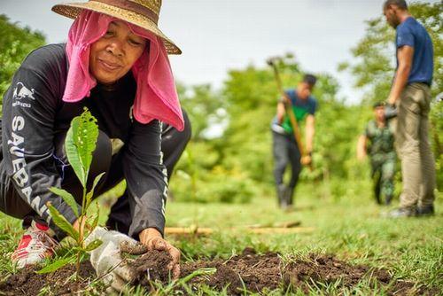 英国や国連開発計画など、「地域主導の気候変動適応策」に向けた原則を公表