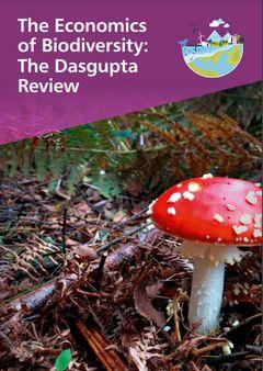 英国政府、『生物多様性の経済学:ダスグプタ・レビュー』を発表:生物多様性の崩壊は経済・生活・幸福を危険にさらす